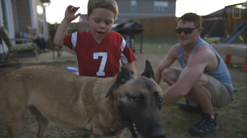 A Belgian Malinois dog with a little boy and a man