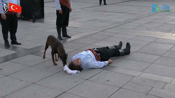 A stray dog sniffing around the head of a man lying on the ground