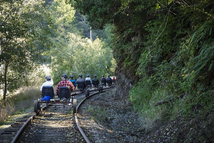 People on railbikes traversing along the Redwood Route