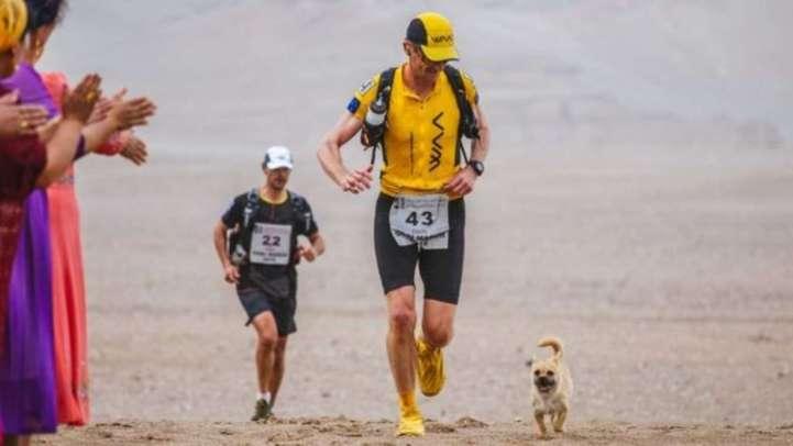 Дион Леонард и Гоби вместе участвуют в забеге