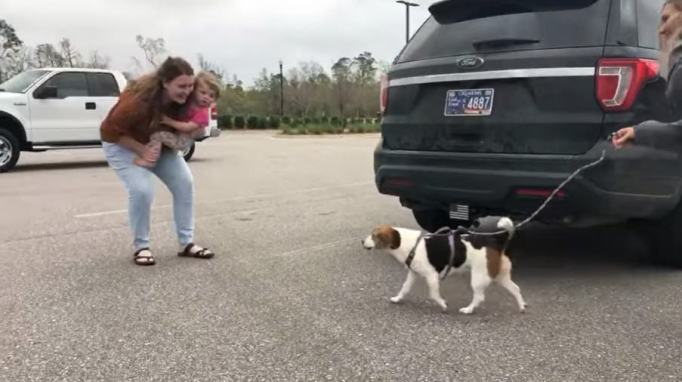 Brooke Lake seeing her beagle Lilly for the first time after two years