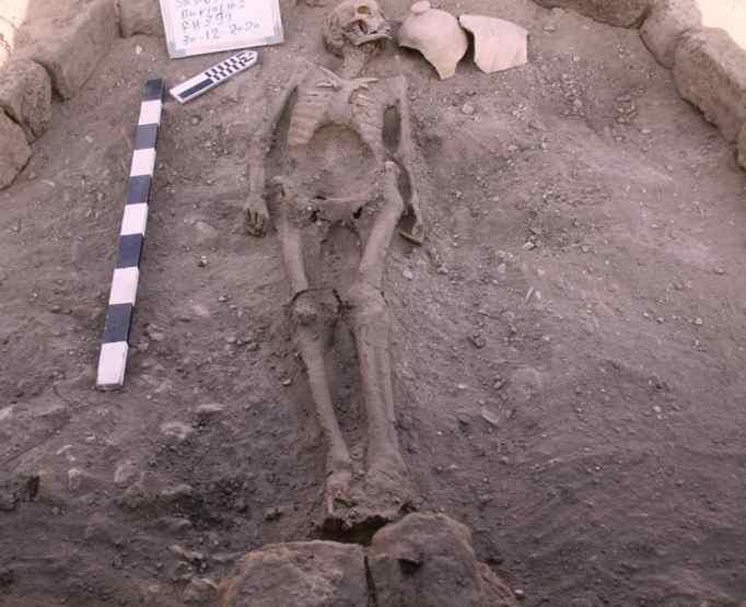 A skeleton buried in the lost golden city in Egypt