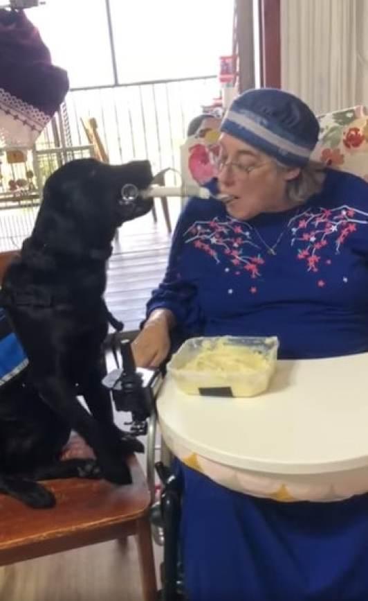 Donna the service dog feeding Bracha Fischel