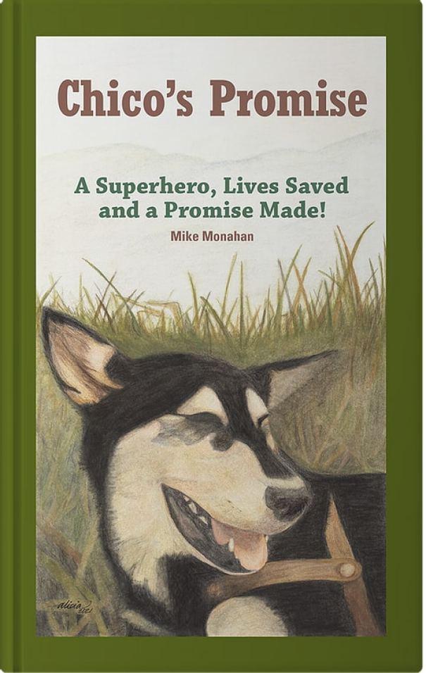 Обложка книги Chico's Promise