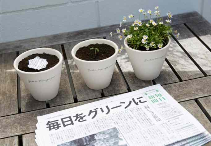 """A pot of plants planted with shreds from the """"green newspaper"""""""