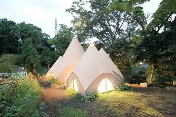 enchanted forest home named Jikka