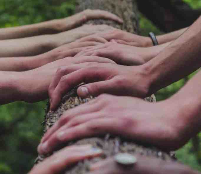 Hands place on tree.