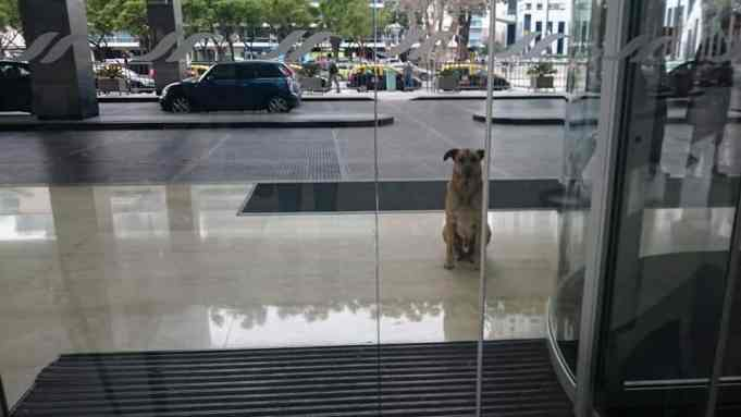 Rubio waiting outside the entrance of a hotel in Buenos Aires, Argentina
