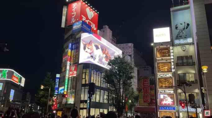 3D calico cat in a billboard in Tokyo