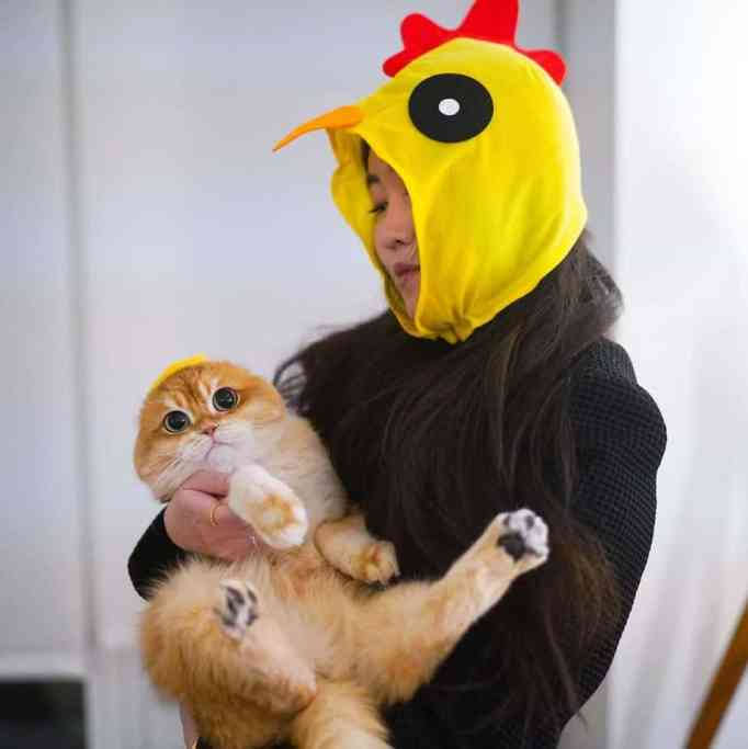 A woman in a chicken costume holding Pisco