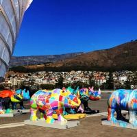 The Rhinos Are Coming - Delighting Cape Town with Art Rhinos