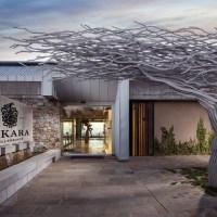 TOKARA opens its private gardens for the annual Rare Plant Sale