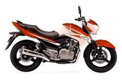 Suzuki Inazuma Heavy Bike Price in Pakistan Model 2021 Specs Features Review