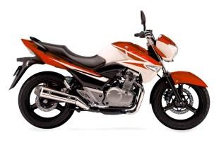 Suzuki Inazuma GW250 Coming In New Shape 2021 Model Price In Japan Pakistan