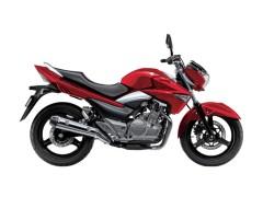 Suzuki Inazuma Aegis 250GW 250JP 2021 Price and Specifications in Pakistan India