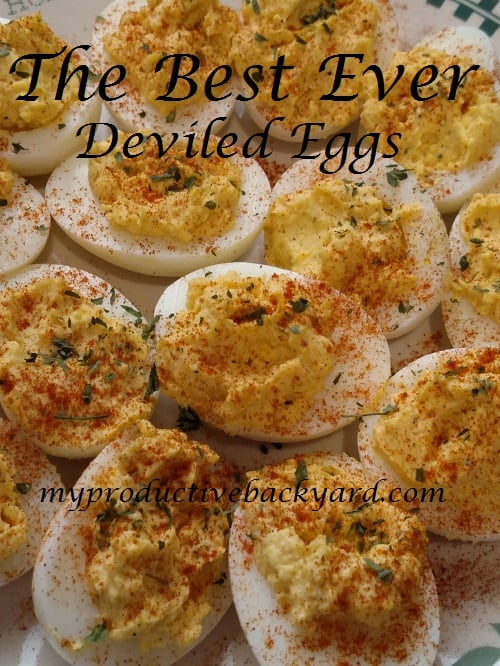 Best Ever Deviled Eggs
