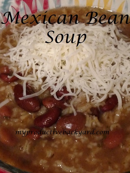 Mexican Bean Soup Mix
