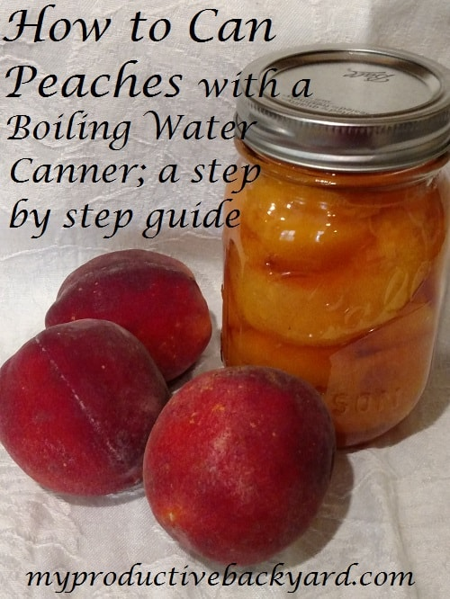 How to Can Peaches with a Boiling Water Canner