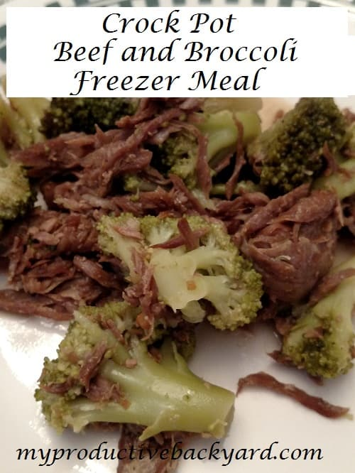 Crock Pot Beef and Broccoli Freezer Meal