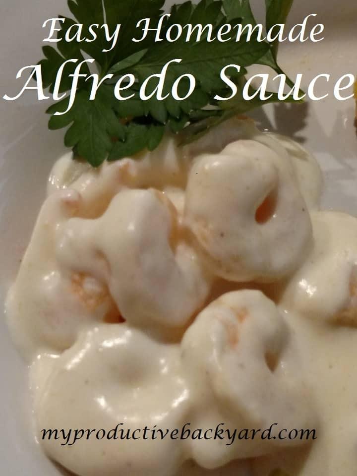 Easy Homemade Alfredo Sauce