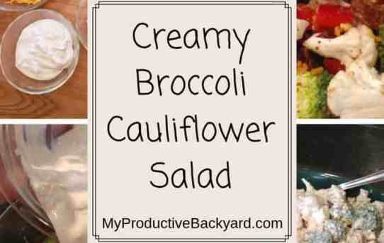 Creamy Broccoli Cauliflower Salad