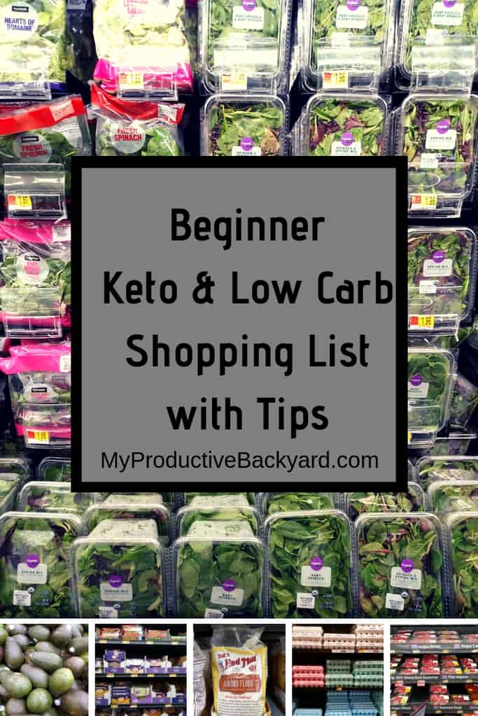 Beginner Keto Low Carb Shopping List with Tips Pinterest pin