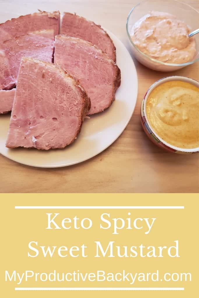 Keto Spicy Sweet Mustard