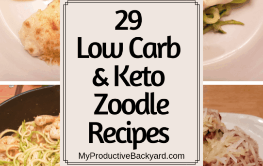 29 Low Carb Keto Zoodle Recipes