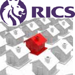 Royal Institute of Chartered Surveyors Slams Government