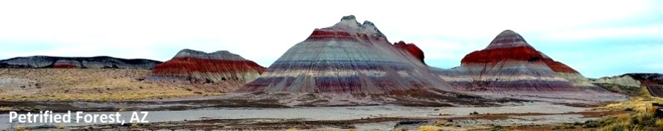 Petrified Forest NP 2