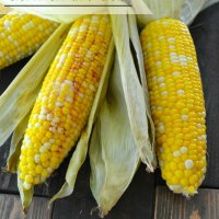 Easy Roasted Corn on the Cob