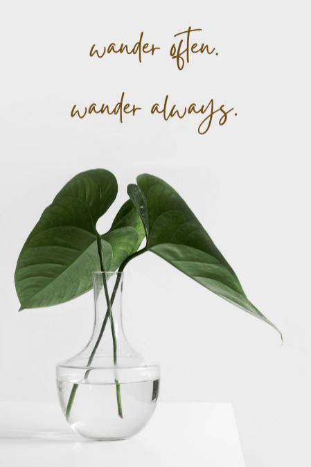 wander often. wander always.