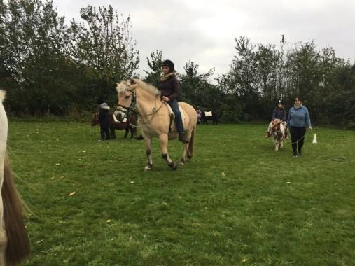 Mette lærer om heste