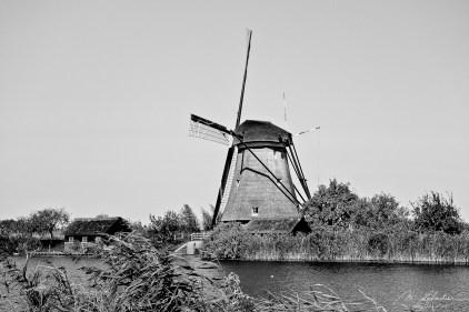black and white: Kinderdijk mill, Netherlands