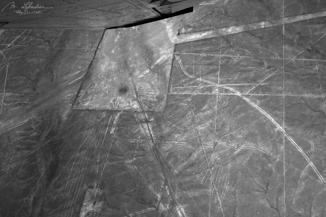 Flying Condor Nazca lines Peru