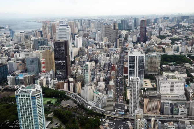 view on Tokyo Japan from the Tokyo Tower top deck
