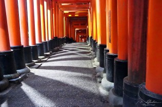 reflections between the torii gates of the Fushimi Inari shrine in Kyoto, shrine dedicated to INARI, the god of Rice and Sake