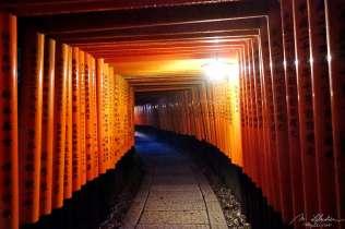 Fushimi Inari Shrine torii gates with their inscriptions at night in Kyoto