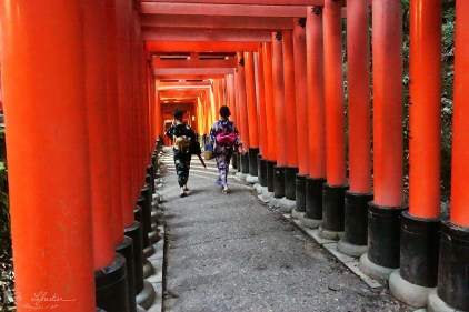 japanese people walking in between the many torii gates of the Fushimi Inari shrine in Kyoto Japan
