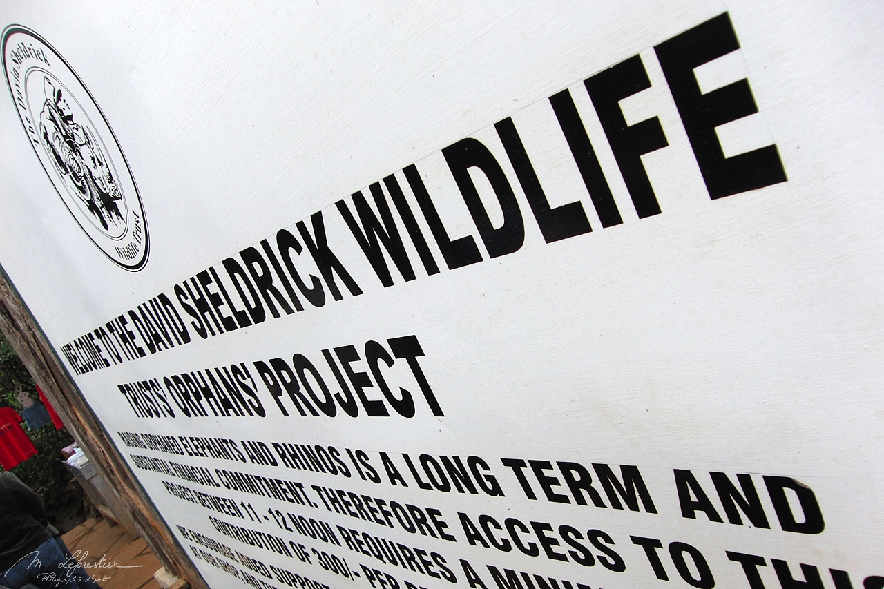 sign at the entrand of David Sheldrick Wildlife Trust in Nairobi orphanage center
