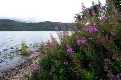 Loch Ness 01