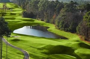 Wild Wing Golf Club