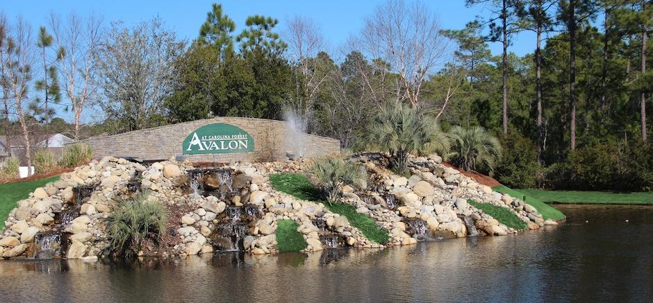 Carolina Forest Neighborhood- Avalon