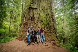 Redwoods2016-1-2