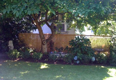 Backyard Vegetable Garden Fence