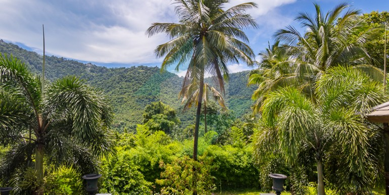 Villa-Jungle-Web-6