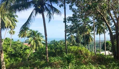 Land #NM189 – Amazing Sea View – South Of Koh Samui – Bang Kao