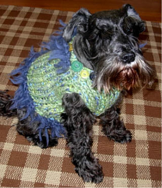 Knitting Leftovers = 'Furrrocious' Dog Sweaters Four Ways (6/6)