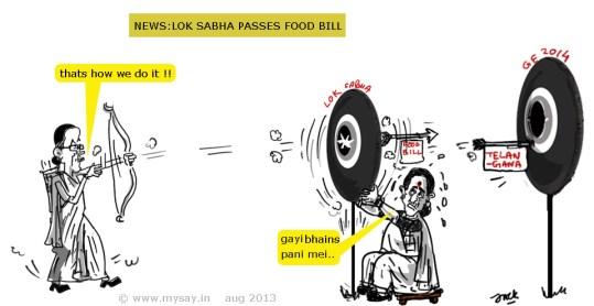sushma swaraj cartoon,sonia gandhi cartoon,food bill cartoon,lok sabha cartoon,general elections 2014 cartoon,mysay.in,political cartoon,
