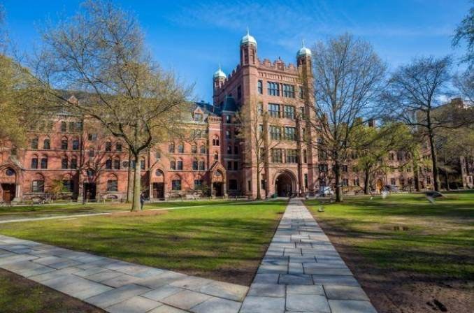 International Presidential Scholarships At University of New Haven - USA 2020
